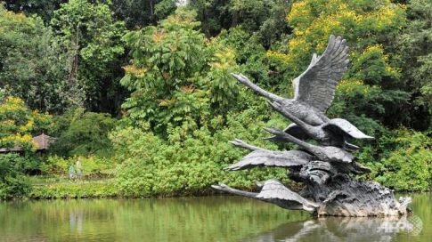 botanic swans